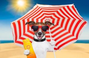 Bescherm je huid met een zonnecreme